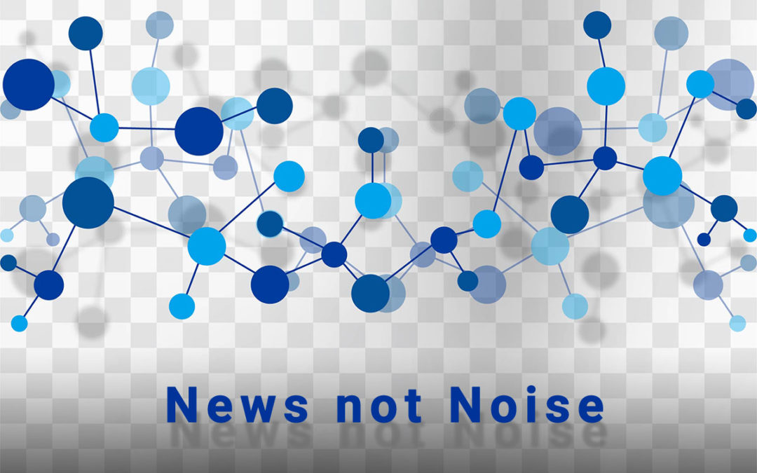 News not Noise #17